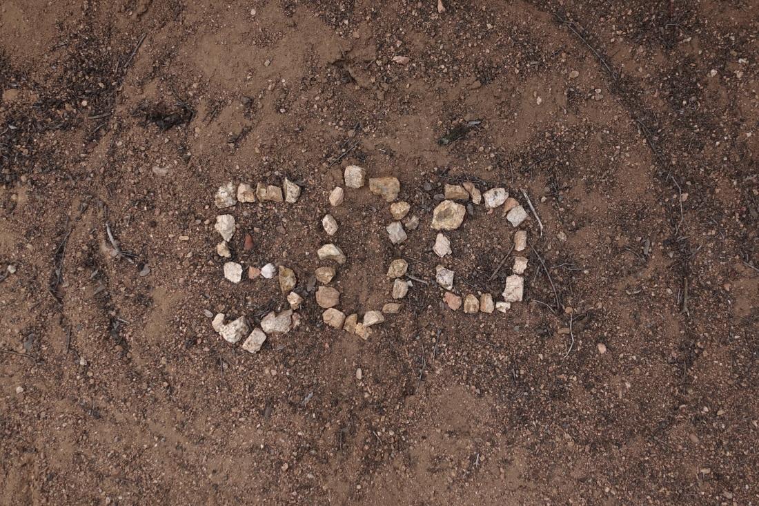 DAN00506